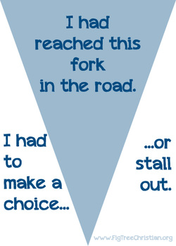 I had reached this fork in the road. I had to make a choice or stall out.
